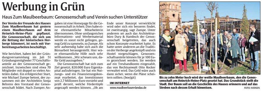 Artikel-Rheinpfalz-Werbung-in-Gruen-2015-11-6